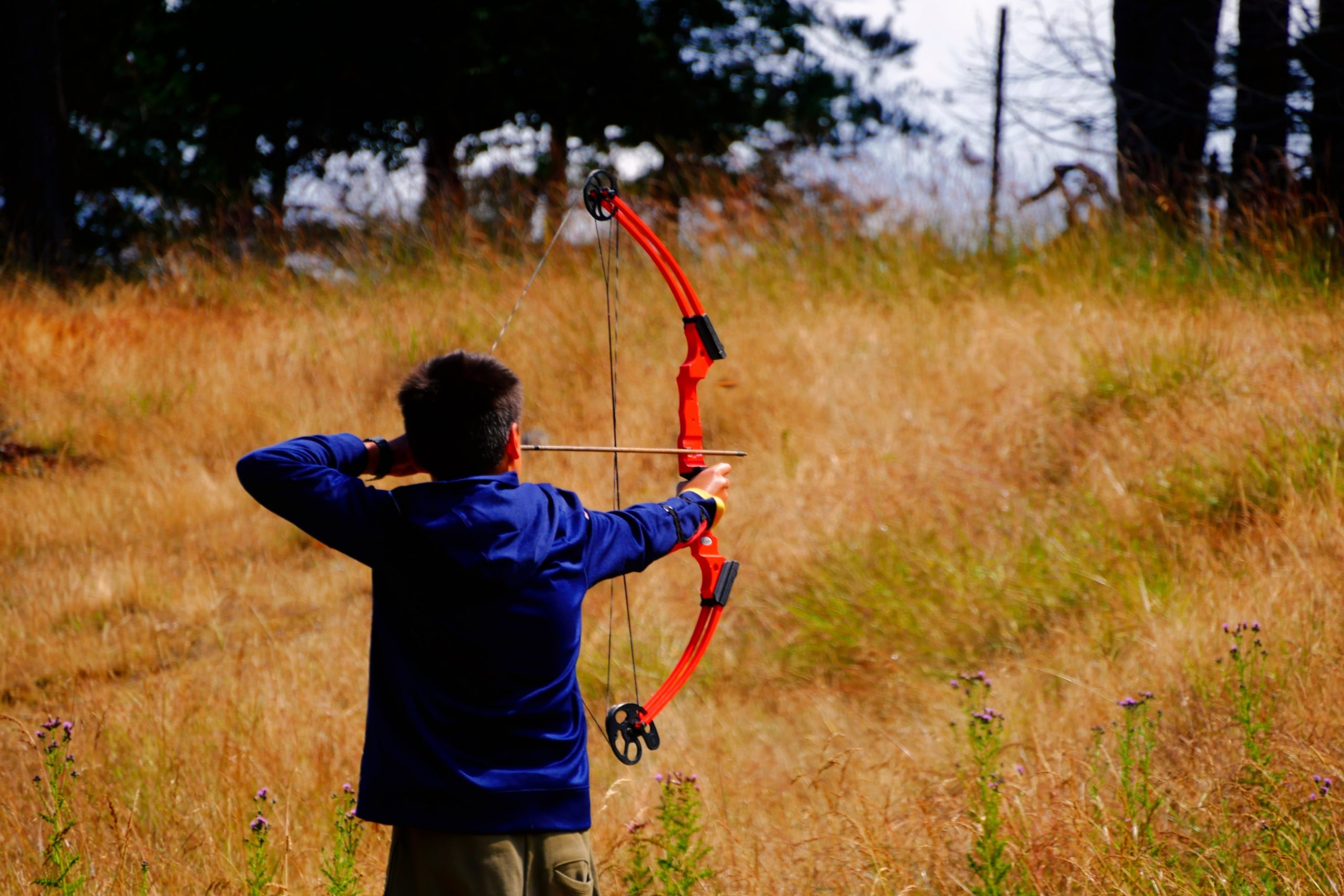 How to Tell the Draw Weight of a Compound Bow